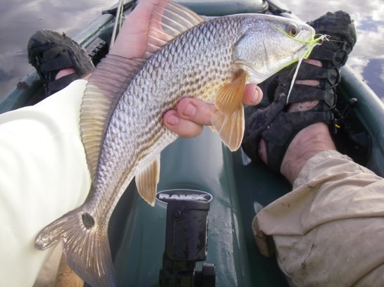 Fishing_08004