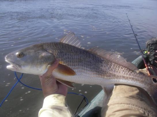 Fishing_08015