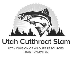 CuttSlamLogo-official-web-grey